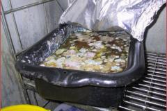 utah food handlers permit free